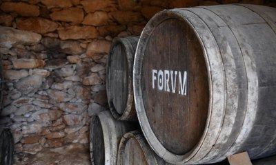 Visita al Celler Avgvstvs Forum
