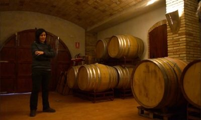 Visita al Celler Can Descregut