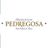 Castelo de Pedregosa